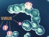 Epidemia de gripă a mai făcut o victimă. Un copil de 1 an și jumătate a murit, la Iași