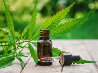 (P) Anxietate, insomnie, dureri cronice și alte probleme pe care le poți trata cu ulei de canabis