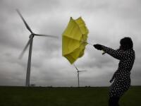 Alertă ANM: Cod galben de vânt în două județe