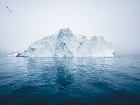 Un aisberg imens s-a desprins din Antarctica. Ce spun exploratorii britanici