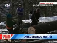 Romania, te iubesc: Abecedarul hotiei