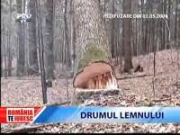 Romania, te iubesc! Drumul lemnului