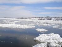 Zeci de gospodarii, inundate din cauza sloiurilor de gheata de pe Bistrita