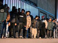 Bizar! Majoritatea imigrantilor care cer azil au fost nascuti in aceeasi zi