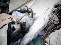 Se intampla si miracole in Haiti, unde se mai gasesc inca supravietuitori