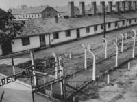 Noile cifre infioratoare despre crimele nazismului. Ce au descoperit cercetatorii in Europa