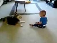 Un caine si un bebelus au inventat un joc nou. Vezi video!