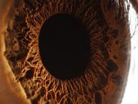 Incredibil! Ochiul uman arata ca un crater de pe Marte