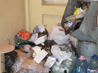 Studentie in mizerie. Conditii insalubre la Caminul ASE din Bucuresti