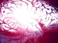 Legatura secreta dintre creierul tau si dorinta: 3 lucruri pe care trebuie sa le stii despre sex