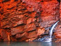 Cele mai vechi forme de viata de pe Pamant. Ele traiau in Australia acum 3,5 miliarde de ani