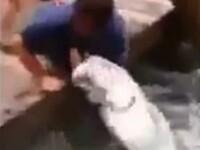 VIDEO. Partida de pescuit la care spectatorii au inceput sa tipe, iar pescarul era sa-si piarda mana