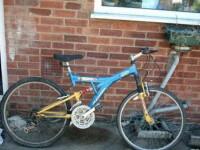 Si-a pus bicicleta la vanzare pe eBay. Detaliul care i-a scapat in fotografie