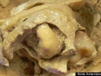 Socant. Ce au gasit arheologii intr-un mormant vechi de 1.600 de ani.