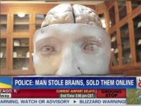 Incident neobisnuit in SUA. Un tanar a incercat sa faca bani vanzand recipiente cu creier uman