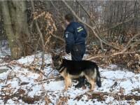 Contrabandisti agresivi retinuti in urma unor focuri de arma la frontiera cu Ucraina