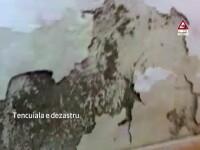 Tara spitalelor mizerabile. Imagini de neprivit la Spitalul Judetean Sibiu, plin de gandaci, rugina si igrasie