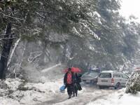 COD PORTOCALIU DE NINSOARE. Avertismentul emis de MAE pentru romanii care vor sa plece in Ungaria, Croatia si Slovenia
