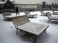 East River din New York a inghetat din cauza frigului extrem. Imaginile transformate in viral pe internet