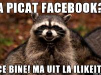iLikeIT. Alternative pentru timpul liber, atunci cand Facebook o sa