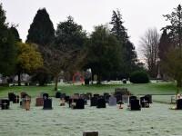 Un fotograf amator a facut o poza intr-un cimitir si s-a speriat cand a vazut pozele. Detaliul observat de prietenii lui