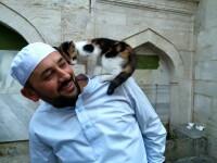 FOTO/VIDEO Un imam din Istanbul a deschis portile moscheii pentru pisicile abandonate