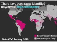 OMS anunta ca virusul Zika