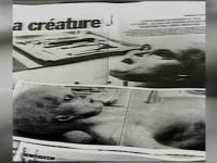 CIA publica fotografii si documente clasificate. Intr-unul din dosare se vorbeste despre cel putin 100 de OZN-uri