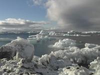 Un aisberg de 5.000 de kilometri patrati sta sa se desprinda de calota glaciara a Antarcticii. Impactul asupra naturii