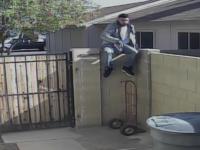 Hoti filmati in actiune, in curtea unei familii din SUA. Cum au reusit sa treaca de caine si sa intre in casa. VIDEO