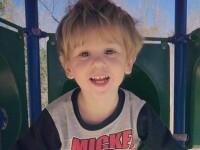 Marturia baietelului 3 ani care a supraviețuit in padure. Spune ca l-a protejat un urs