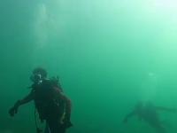 Turiştii care se scufundă în Marea Neagră în ianuarie.