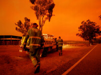 Evacuări la Canberra, în urma unui incendiu de vegetație izbucnit lângă aeroport