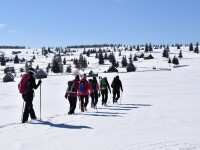 Comisia Europeană a lansat un site dedicat reluării în siguranță a turismului în UE