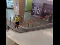 Cine se află în spatele amenințării cu bombă din Vâlcea. Două mall-uri au fost evacuate