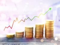 Rata anuală a inflației a crescut la 4% în luna decembrie, peste prognozele BNR