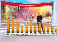 2019, anul cu cele mai puține nașteri în România. Urmările ar putea fi dramatice