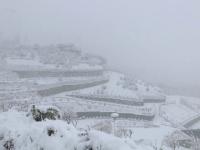 Haos în Teheran, după ninsori abundente. Accidente rutiere și școli închise