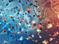 Cercetătorii au decoperit o metodă prin care pot fi tratate toate tipurile de cancer