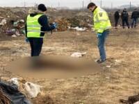Descoperire înfiorătoare făcută de autorități pe un câmp de la ieșirea din Timișoara