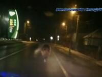 VIDEO. Un urs a fost alungat cu mașina de jandarmi dintr-o localitate din Harghita
