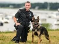 Un polițist și-a împușcat câinele de patrulă, la o intervenție de urgență. Ce s-a întâmplat
