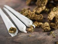 """Boala misterioasă apărută în statele americane unde a fost legalizat consumul de marijuana. """"Se zvârcolesc, se țin de burtă"""""""