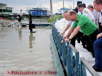 Vinovatii pentru inundatii: Guvernul, autoritatile locale si Dumnezeu