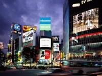 A treia economie a lumii se balbaie. Ratingul Japoniei, redus de Moody's