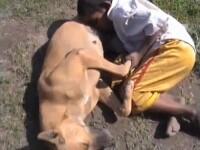 IMAGINEA ZILEI pe mapamond. De foame, un copil suge lapte de la un caine vagabond. VIDEO