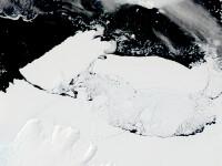 Un aisberg mai mare decat Bucurestiul s-a desprins din banchiza Groenlandei. De ce e fara precedent