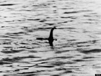 Monstrul din Loch Ness si-a facut din nou aparitia? Un barbat din Grecia sustine ca l-ar fi fotografiat. FOTO