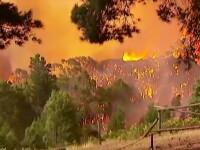 Despagubiri record vor fi acordate in Australia. Cati bani o sa primeasca supravietuitorii incendiilor de vegetatie