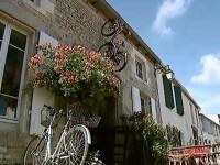 Povestea pictorului roman care a ales casa taraneasca in locul vilei somptuoase. Locuintele cu istorie, la mare cautare